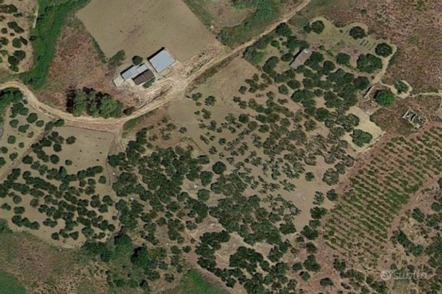 TRAPANI, Salemi: sette frustoli di terreno agricolo