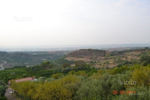SIRACUSA, Carlentini: agrumeto 1 ettaro